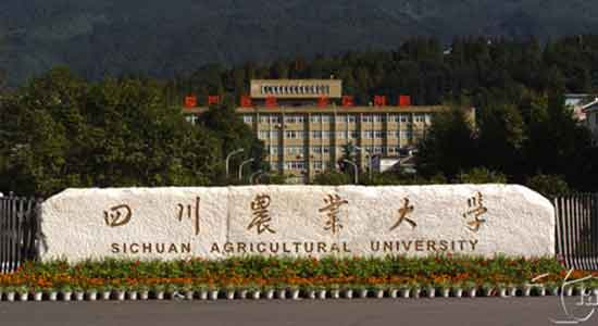 四川农业大学学习代金券